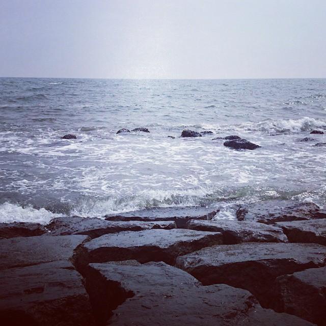 今年初海だけど、とりあえず寒い…