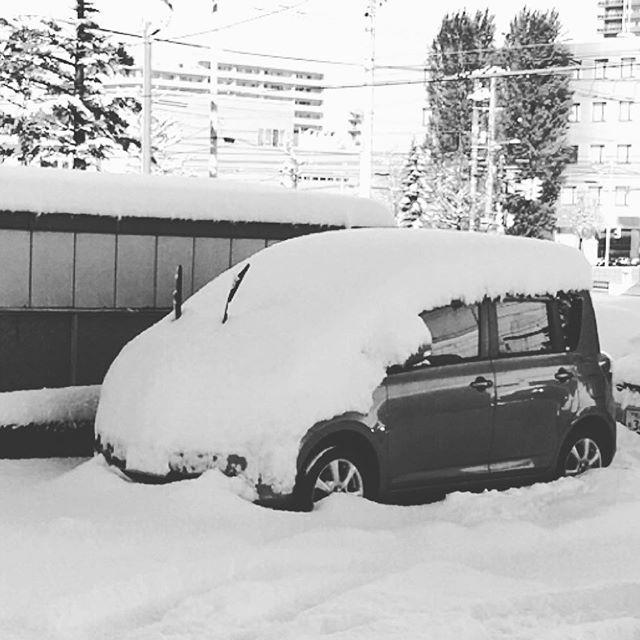 昨日の朝。雪がこんもり振りまして、車の発掘作業をする羽目に。#さすがにまだ早い #もう冬